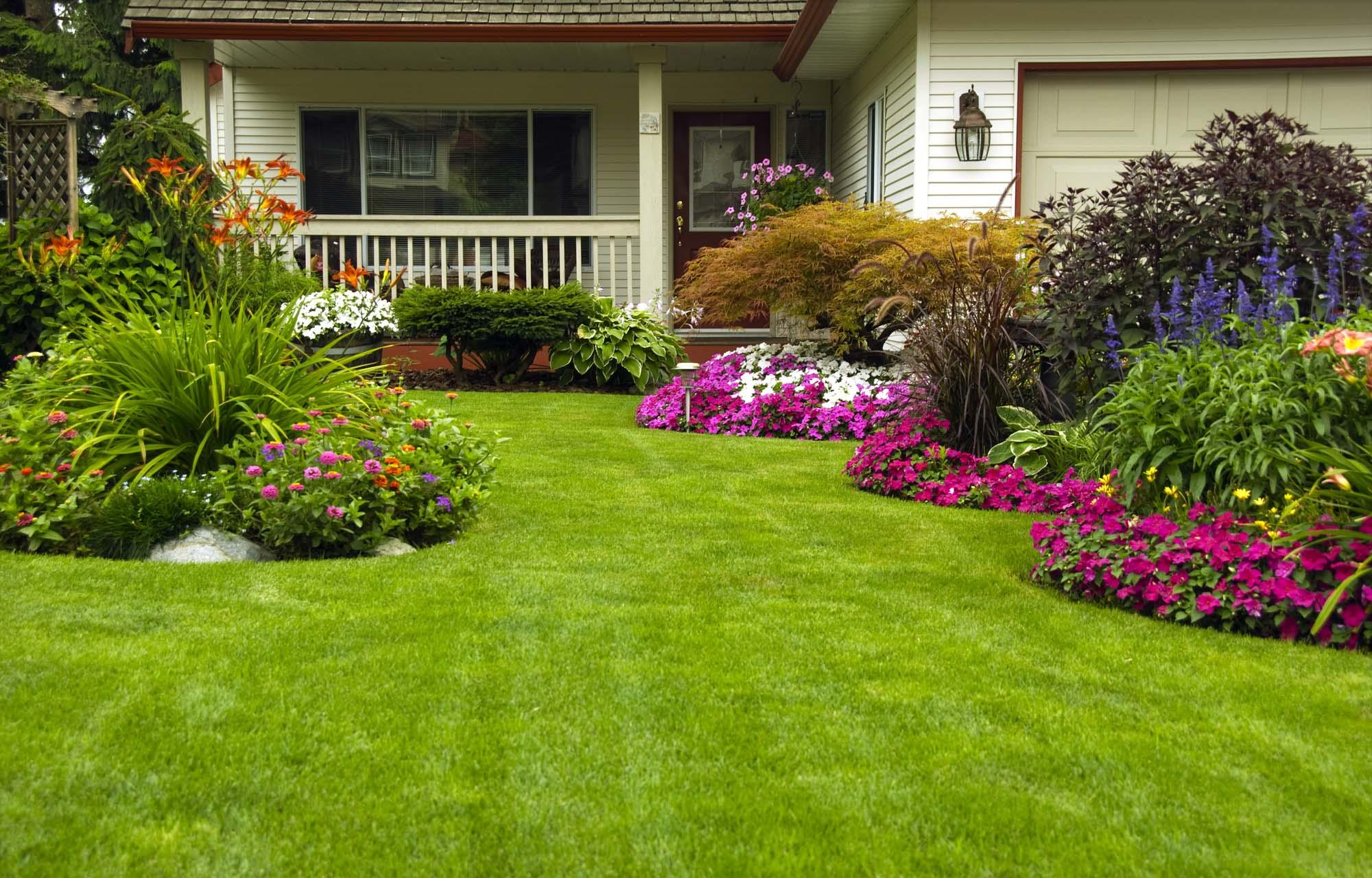 Hovenier den haag voor al uw tuinklussen